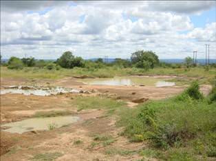 Leseding Township: area of land identified for a 9 hole golf course